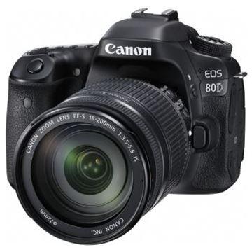 图片 佳能(Canon)EOS 80D 单反套机(EF-S 18-200mm f/3.5-5.6 IS) 2420万有效像素 45点十字对焦 WIFI/NFC